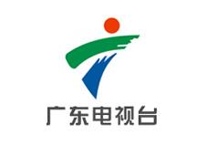 广东电视台报道董易奇老师六爻开课